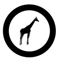 Giraffe black icon in circle vector