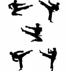 Karate fighters silhouettes vector