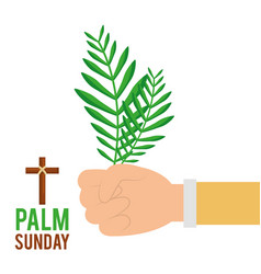 Palm sunday hand holding branch faith celebration vector