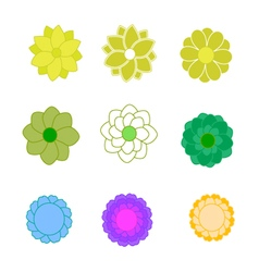 Set of bright flower vector image