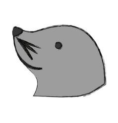 sea lion cartoon vector image