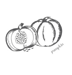 pumpkin in a cut with seeds is painted by ha vector image