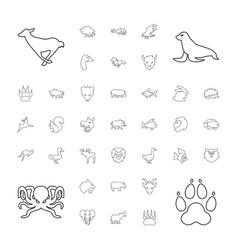 37 wild icons vector