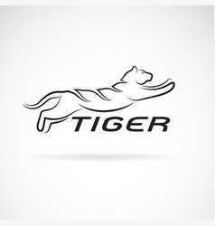 Black tiger design on white background wild vector