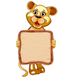 board template with cute lion on white background vector image