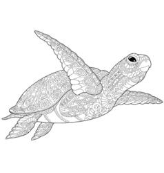 entangle stylized turtle vector image