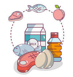 Groceries and healthy food vector