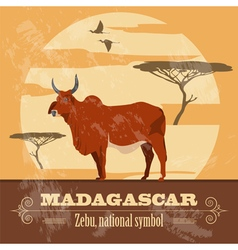 Madagascar National symbol zebu Retro styled image vector