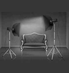 photo studio with sofa and softboxes vector image