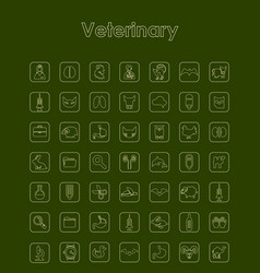 Set of veterinary simple icons vector