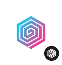 Hex spiral colorful logo vector image