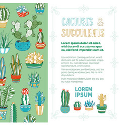 cactuses and succulents background vector image