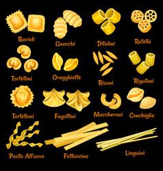 italian pasta sorts icons vector image