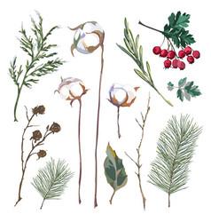 Set decorative elements vector
