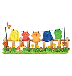 A garden with hanging clothes and a bunny vector image vector image