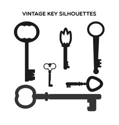 key silhouettes vector image vector image