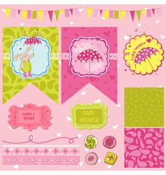 Baby Bunny Shower Theme vector image vector image