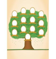 genealogy tree vector image vector image