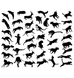 Animals in a jump vector