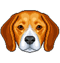 Pixel beagle dog portrait detailed isolated vector