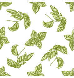 Seamless pattern with hand drawn pastel basil vector