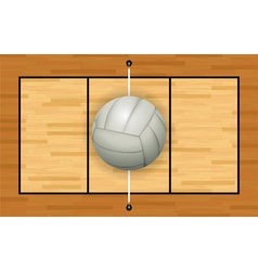 Volleyball Court and Volleyball vector