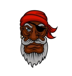Old cartoon pirate with eye patch vector image vector image