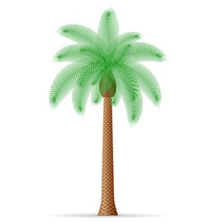 palm tree 21 vector image vector image