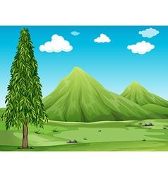 Scenery vector image