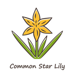 Common star lily yellow color icon blooming vector