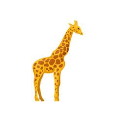 giraffe symbol of african savannah vector image