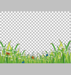 green grass with butterflies on transparent vector image