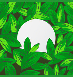 Green leaf texture with white paper scenn vector