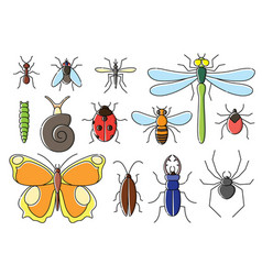 Insects set in flat style line art bugs icon vector