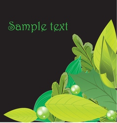 Leavesbackground vector