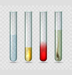 medical lab test tubes vector image