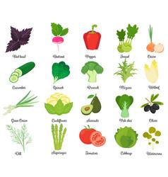 Set of tasty vegetables vector