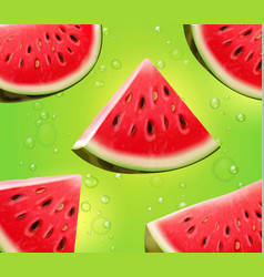 watermelon realistic on green background vector image