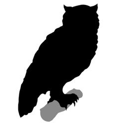 silhouette of owl vector image vector image