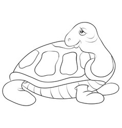 A children coloring bookpage cute turtle image vector