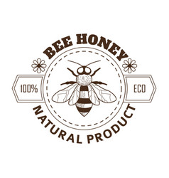 beekeeping farm product bee honey isolated icon vector image