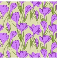 crocus seamless pattern 2 vector image