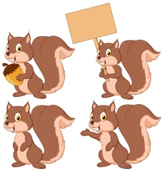 Cute carton squirrel collection set vector