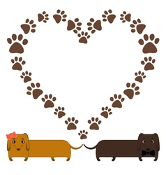 dachshunds vector image