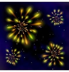 Fireworks in the dark sky vector image