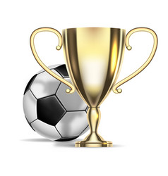 football championship soccer ball and golden cup vector image
