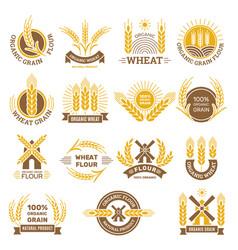Wheat grain logo flour farm food for breakfast vector