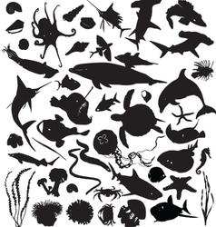 silhouettes of marine life vector image vector image