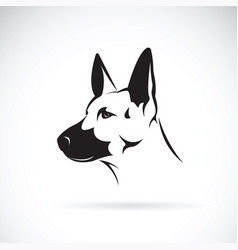 Dog head german shepherd on white background vector