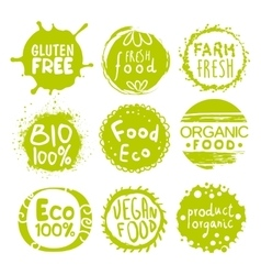 Green Eco Food Lables Set vector image
